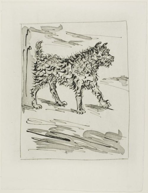 Pablo Picasso, written by Georges-Louis Leclerc, comte de Buffon (French, 1707-1788), published by Martin Fabiani (French), The Dog, from Histoire naturelle, 1936, published May 26, 1942, Aquatint and sugar lift etching with drypoint on copper in black on off-white laid paper